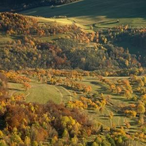 V jesenných sadoch