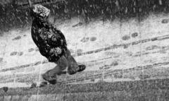 ... hurá zase sneží :))) ...