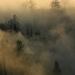 jesenné hmly 2