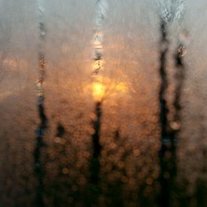 ... chladne rano ...