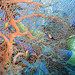 v zajati koralu