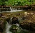 Potok v lete