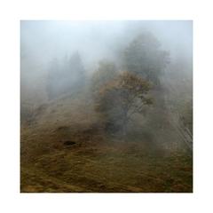 Ranné hmly na Málinom...