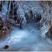 V ľadovej krajine ...