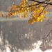 jesen nad riekou