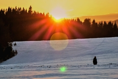 Slnko a Zem