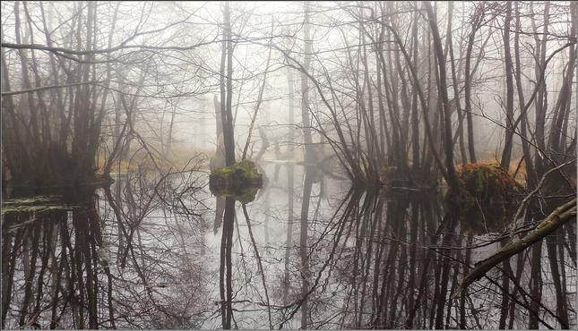 Jurske jazero