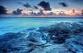 """"""" BLUE SEA """""""