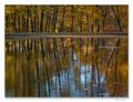 Jesenné zrkadlenie