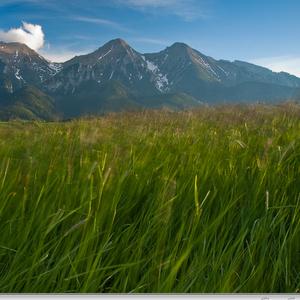 Na lúkach pod Tatrami