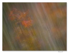 Farby jesene cez závoj vodopádu