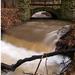 Potok v období dažďov