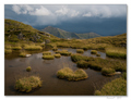Pri jazere Capra