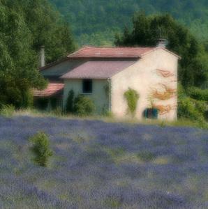 Provence impresia