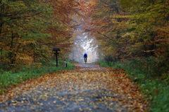 obklopený jeseňou ...