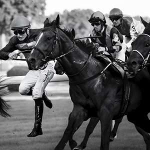 S koňom o preteky ...