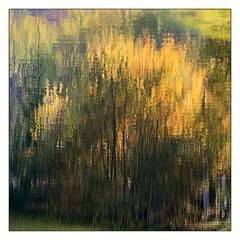 jesenné reflexie