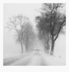 Výlet do zimy