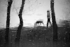 Kamarát do dažďa