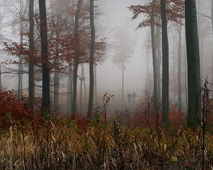 Prechádzky jeseňou