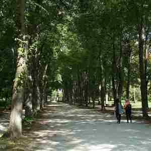 Po ceste v parku..