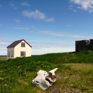 Islandský surealizmus