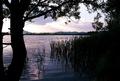 súmrak nad jazerom 2
