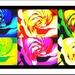 Ruža - pop art