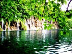 Voda a zeleň