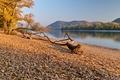 Jeseň na Dunaji