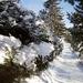 Zima v Novom Smokovci