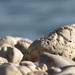 Chorvátsky kameň