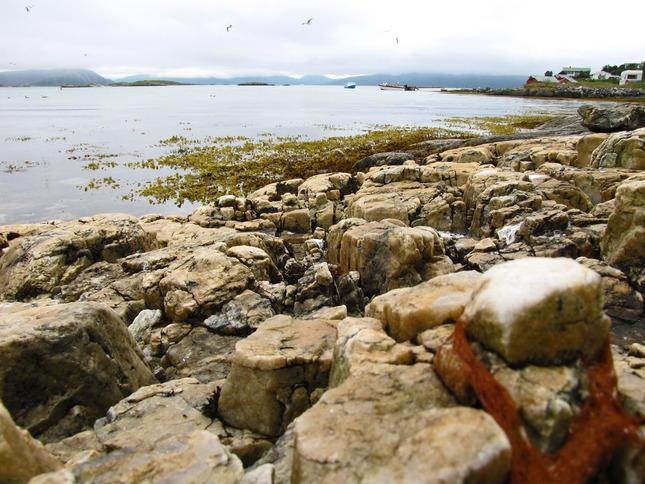 Sommaroy island