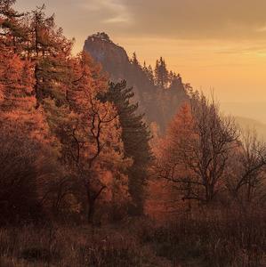 neskorá jeseň v skorý podvečer..