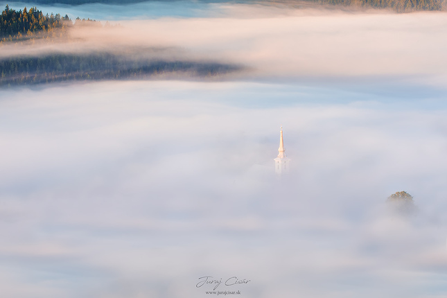 Utopený v hmle