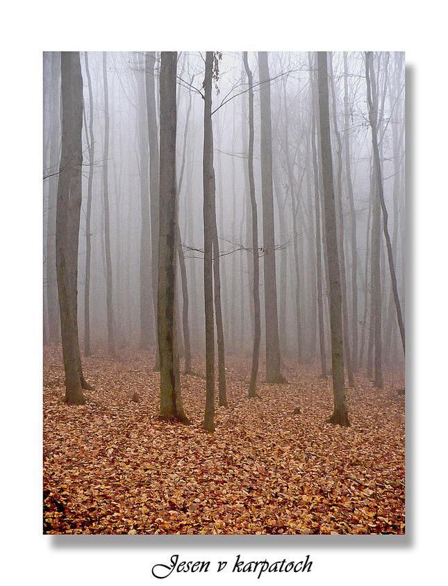 Jeseň v karpatoch