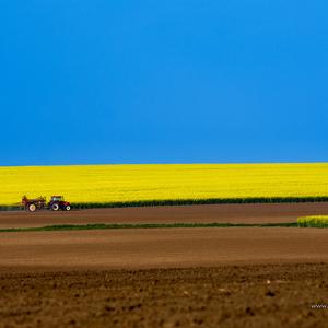 Poľno-repkovo-traktorová