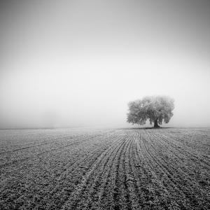 V hmle...