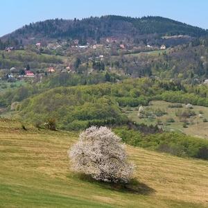 Jar pod Tanádom