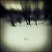 alone .... II