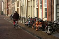 Spomienky na Leiden V