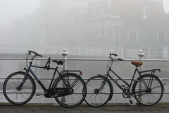 Spomienky na Leiden III