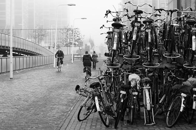 Spomienky na Leiden I