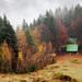Jesenné nádychy II