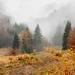 Jesenné nádychy