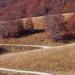 Cesta do Jesene