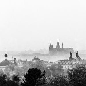 Hmla v Prahe
