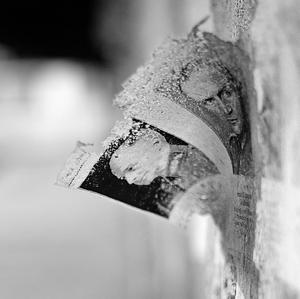 Zo steny