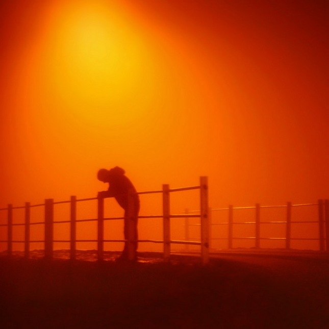 V nočných hmlách