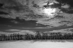 Zimné háje